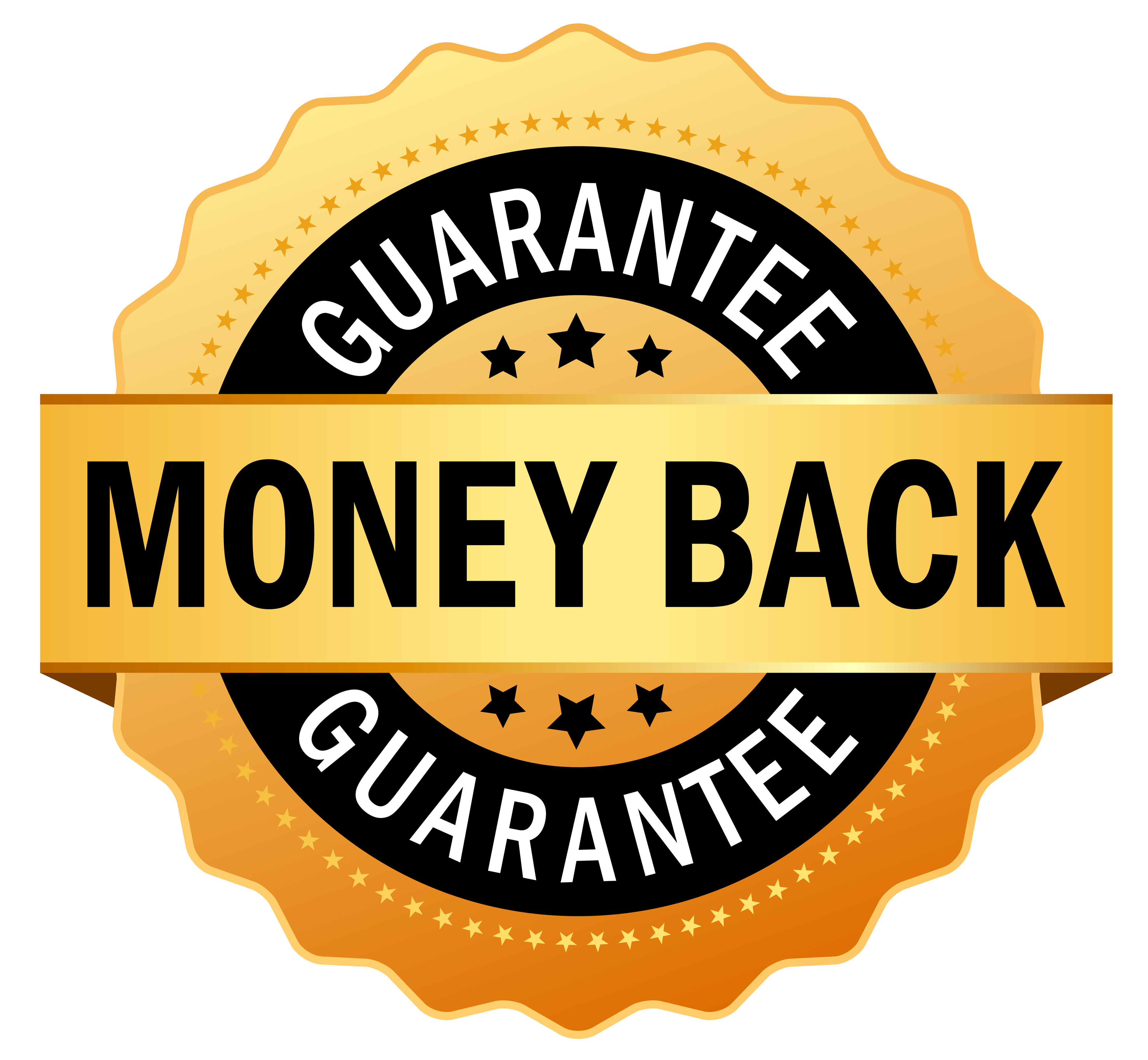 best pt in malmö with money back guarantee